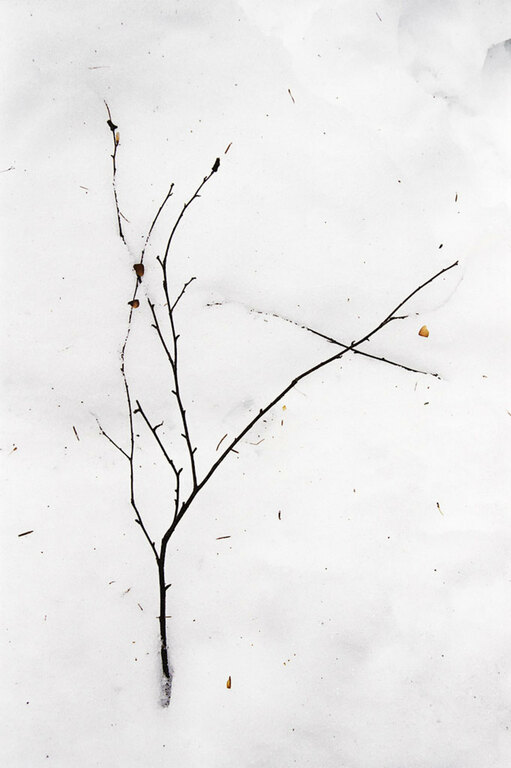 Gestural minimalism - 035 ST