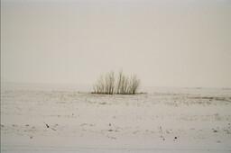 Landscape - 011 CE