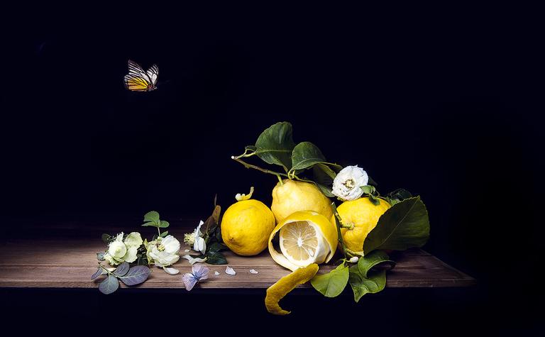 Natura morta con limoni e farfalle
