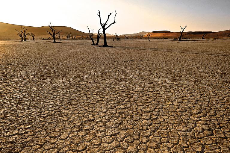 Dry Dancers in the Desert