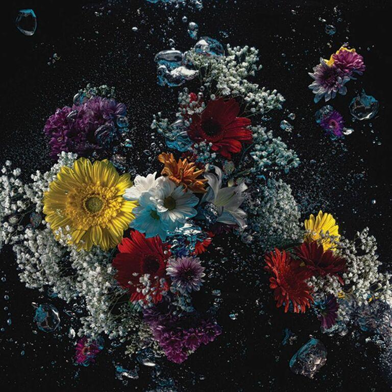 Flowers in the dark #01